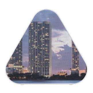 Condominium towers at the waterfront in Miami Bluetooth Speaker