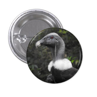 Condor Badge Button