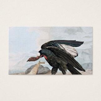 Condor Bird and Seal Vintage Art Business Card