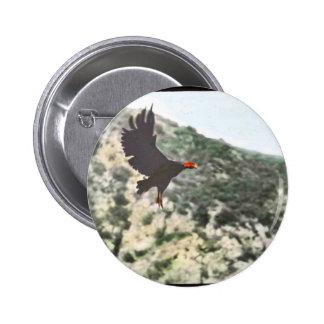 Cóndor de California Pins