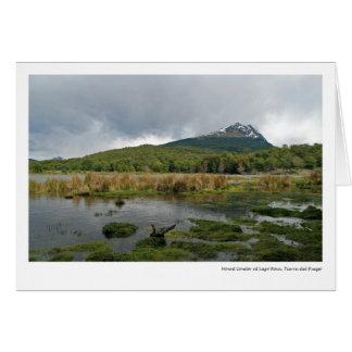 Cóndor del soporte en Lago Roca, Tierra del Fuego Tarjeta De Felicitación
