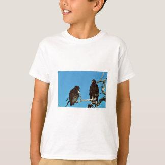 Cóndores juveniles playeras