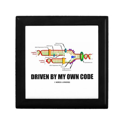 Conducido por mi propio código (réplica de la DNA) Joyero Cuadrado Pequeño