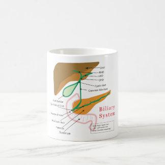 Conducto biliar biliar de la carta del diagrama de tazas de café