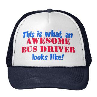 Conductor del autobús impresionante gorro