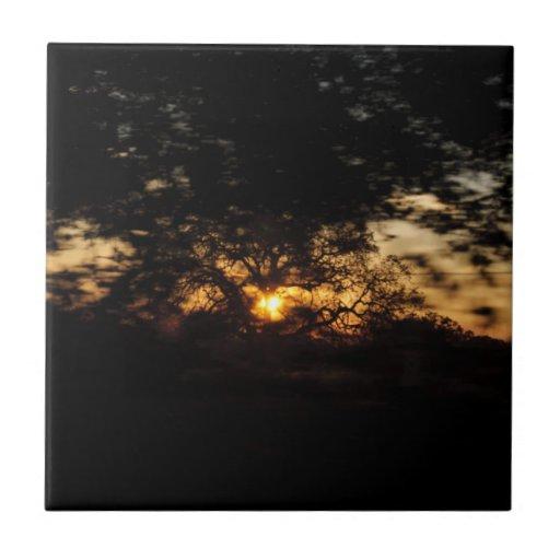 Conduzca por puesta del sol azulejos