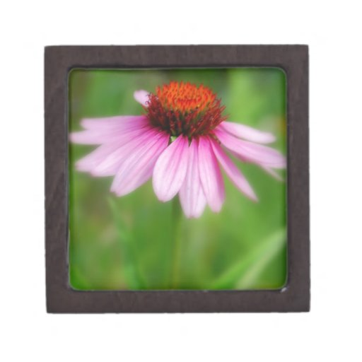 Cone Flower  Abstract Print Premium Trinket Box