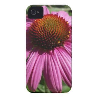 Cone Flower iPhone 4 Case