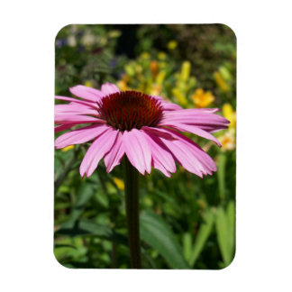 Cone Flower Delight Magnet