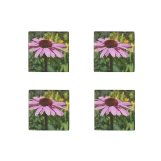 Cone Flower Delight Stone Magnet