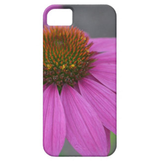 Cone Flower IPhone 5 Case
