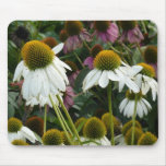 Cone Flower Mouse Pad