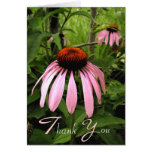 Cone Flower Thank You Card