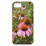 Cone Flowers iPhone 5 Casemate Case iPhone 5 Covers