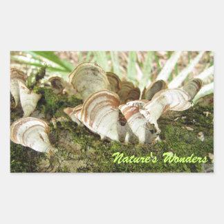 Cone Mushroom Stickers