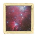 Cone Nebula Gold Finish Lapel Pin