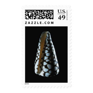 Cone shell 2 postage stamps
