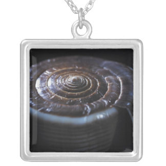 Cone shell silver plated necklace