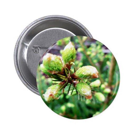 Cone Sprouts 2 Inch Round Button
