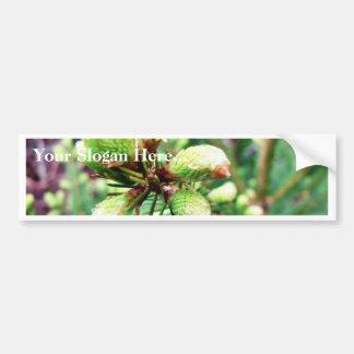 Cone Sprouts Bumper Sticker