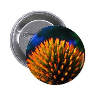 coneflower1 button