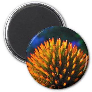 coneflower1 refrigerator magnets