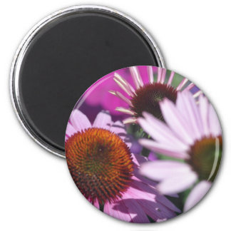 Coneflower and other flowers magnet