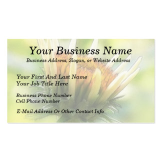 Coneflower Bud Double-Sided Standard Business Cards (Pack Of 100)