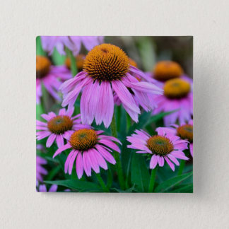 Coneflower Button