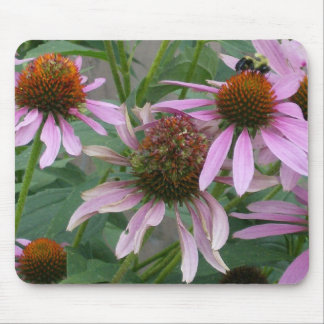 Coneflower Dance Mouse Pad