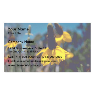 Coneflower Double-Sided Standard Business Cards (Pack Of 100)