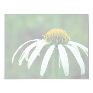 Coneflower estrecho-con hojas blanco invitacion personal