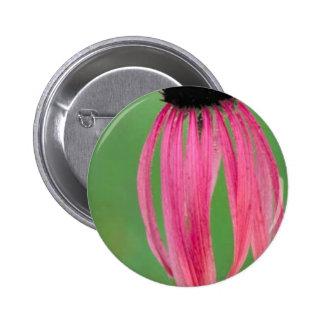 Coneflower Estrecho-con hojas Pin