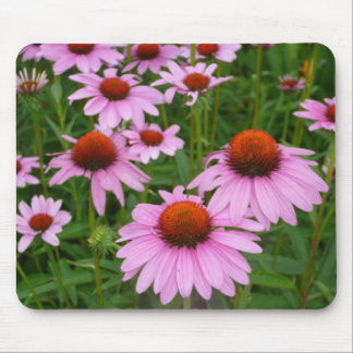 Coneflower fields mouse pad