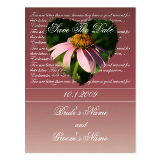 Coneflower Floral Save The Date postcard. Postcard