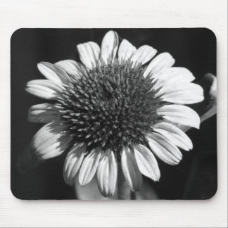 Coneflower Mouse Pad