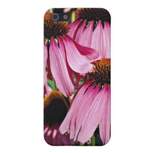 Coneflower púrpura, flores del purpurea del echina iPhone 5 carcasa