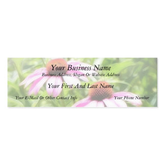 Coneflower Twins Double-Sided Mini Business Cards (Pack Of 20)