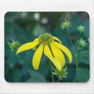 Coneflower Yellow Wildflower Mousepad