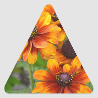 Coneflowers anaranjados hermosos pegatina triangular