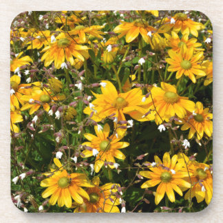 Coneflowers and silenes beverage coaster