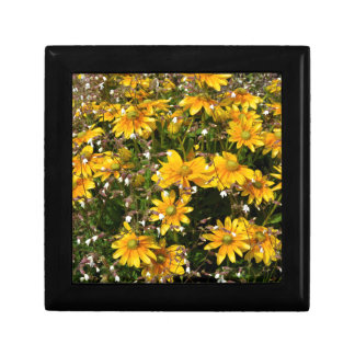 Coneflowers and silenes gift box