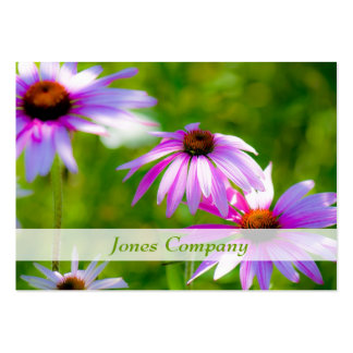 Coneflowers Beautiful Floral Business Card