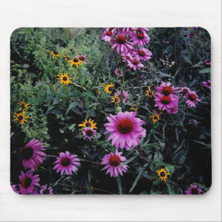 Coneflowers & Black-Eyed Susans_1a Mouse Pad