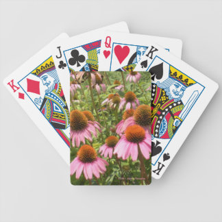 Coneflowers Playing Cards