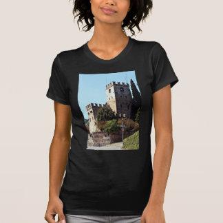 Conegliano, Castle Vecchio, Venetian region, north Shirts
