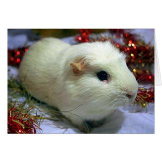 Conejillo de Indias de la tarjeta de Navidad