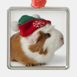 Conejillo de Indias lindo con el gorra del navidad Adorno Navideño Cuadrado De Metal