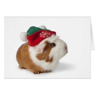 Conejillo de Indias lindo con el gorra del navidad Tarjeta De Felicitación