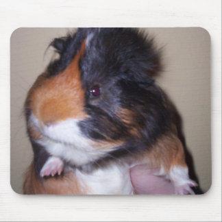 Conejillo de Indias Mousepad